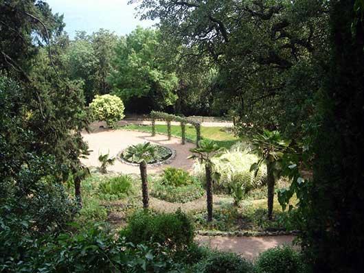 Вид парка приключений в Никите