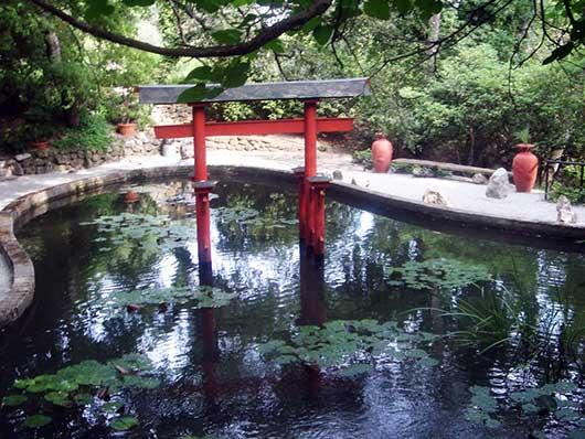 Бассейн в Японском стиле