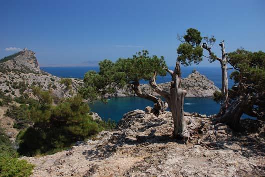 отдых летом в Крыму