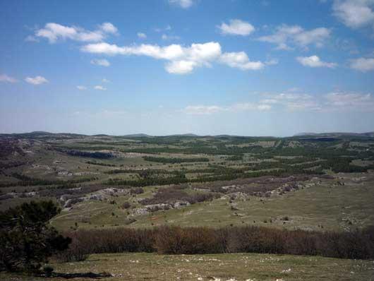 грибные места на плато Ай-Петри