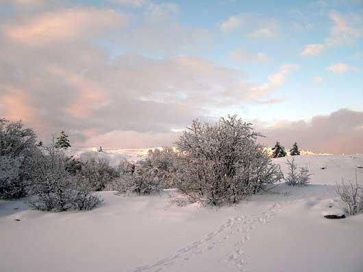 фото зимы на Ай-Петри