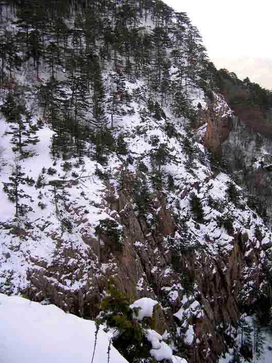 заснеженные скалы ай петри зимний отдых