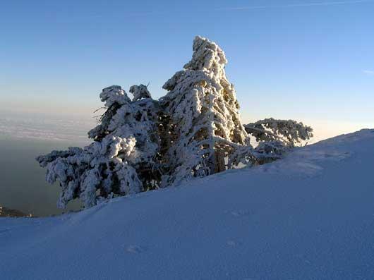 зимний вид плато
