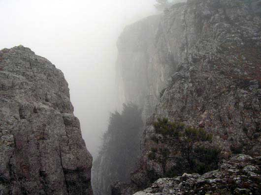 туман в ущелье на Ай-Петри