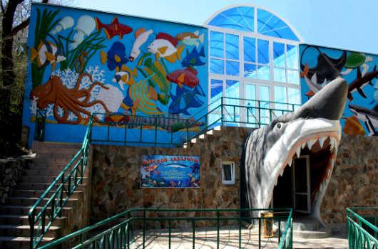 стационарная выставка рыб