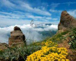 Долина приведений фото