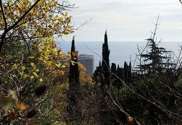 Вид на гостиницу Ялту с Массандровского парка