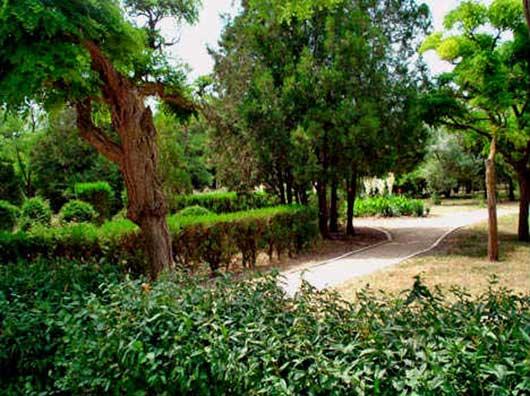 Пионерский парк
