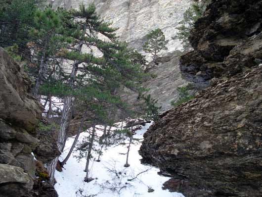 Таракташ зимой фото