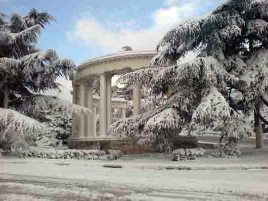 Арка основанию НБС зима
