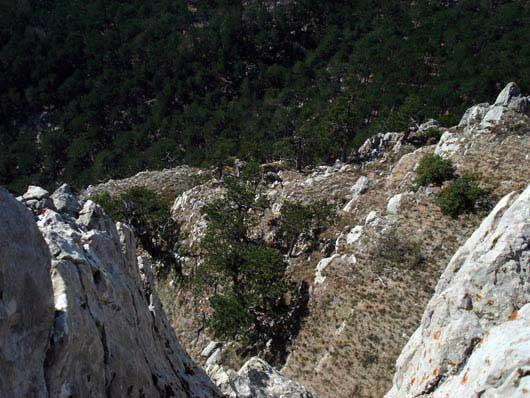 Гора Пендикюль