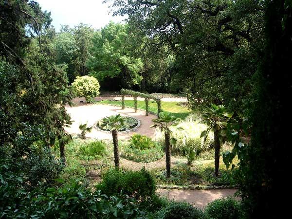 Парк Приключений в Никите