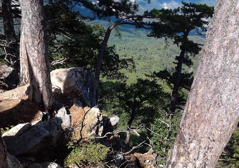 Подъём на плато Ай-Петри