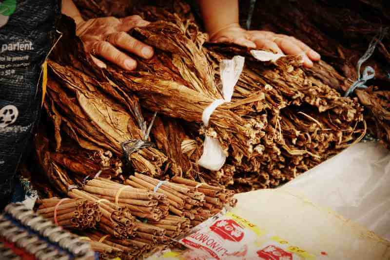 Сбор табака