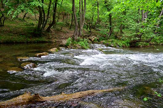 Чернореченского каньон природа