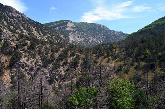 Вид на Чернореченский каньон