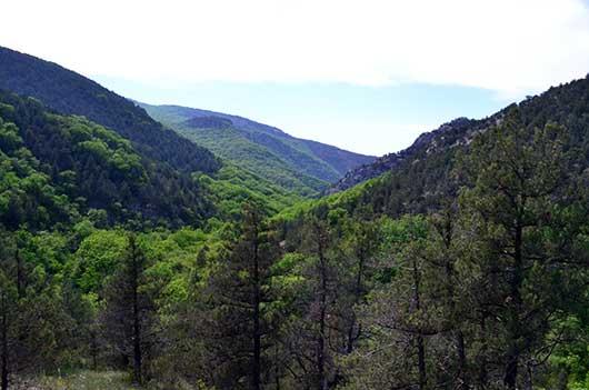 Чернореченский каньон вид сверху