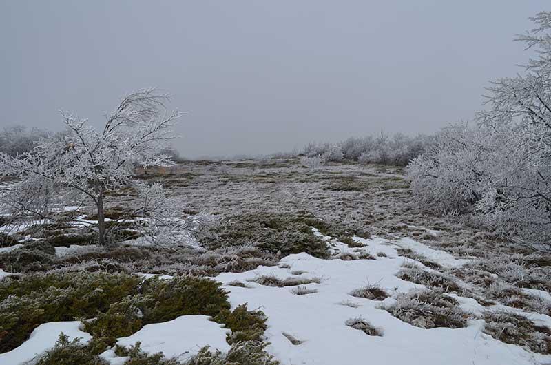 Начало зимы на Ангарском перевале