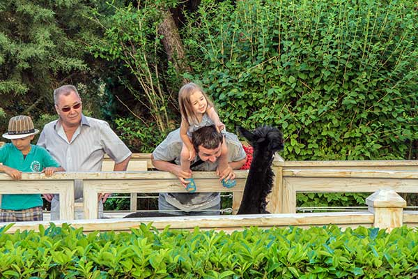 Ялта- отдых с детьми фото