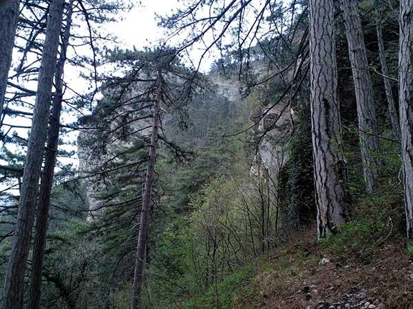 Подъём на гору Ставри-Кая