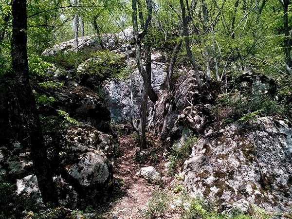 Прогулка по Боткинской тропе