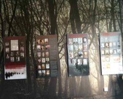 Музей партизанской славы - фото 7
