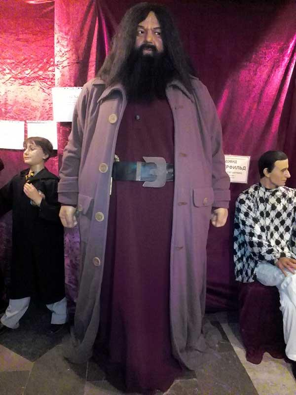 Рубеус Хагрид - персонаж фильма о Гарри Поттере
