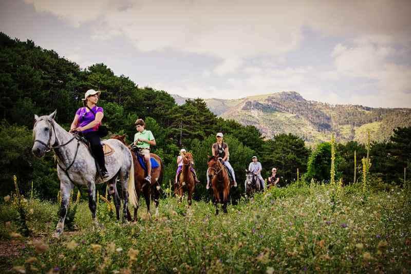 Конные прогулки и экскурсии по Крыму