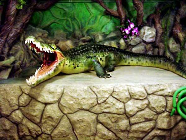 макет крокодила