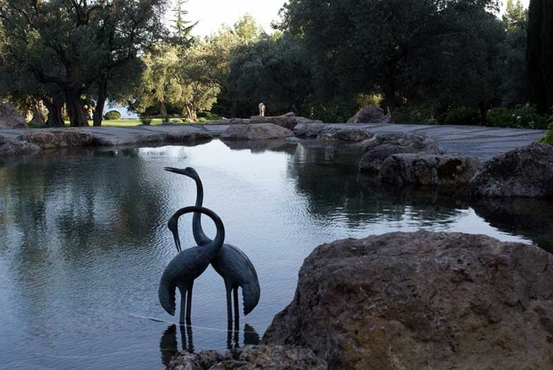 Журавли на озере