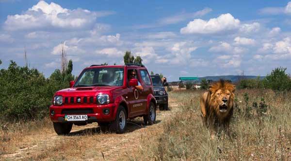 джип-тур в «Сафари со львами» Крым