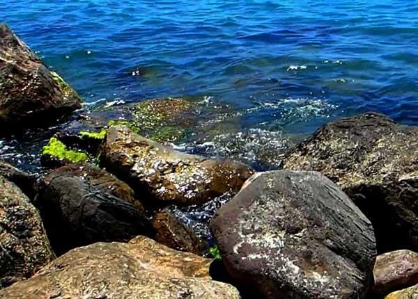 Дикий пляж в Симеизе