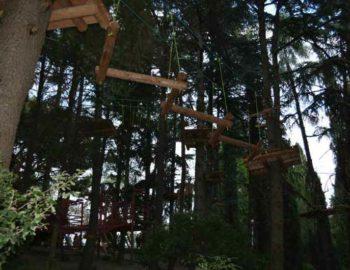 Верёвочный парк «Фрирайт для детей»