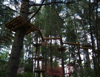 Верёвочный парк в Приморском парке