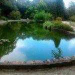 Парк «Монтедор» (Никита, Крым)