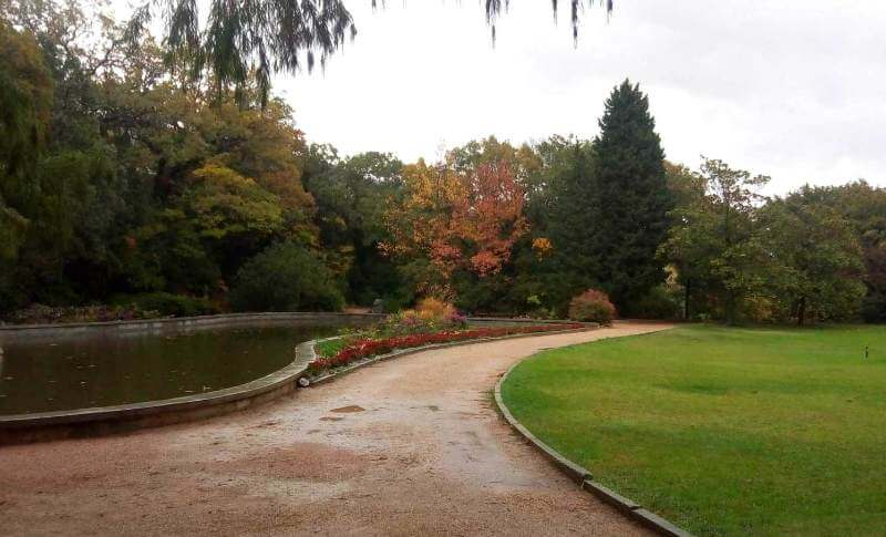 """Парк """" Монтедор"""" в Никитском ботаническом саду"""
