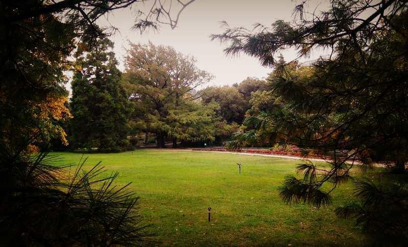 """Вид парка """"Монтедор"""""""