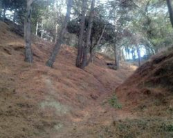 Путешествие по парку «Монтедор»