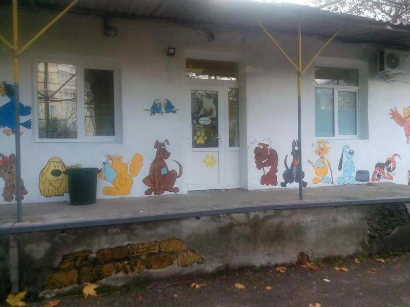 Ветеринарная клиника Евгении Кононенко в Ялте