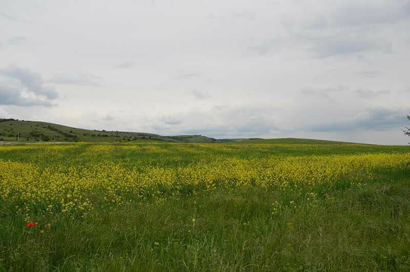 Байдарская долина (Крым)
