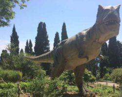 Парк динозавров - фото 18