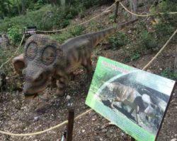 Парк динозавров - фото 9