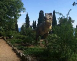 Парк динозавров - фото 7