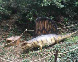 Парк динозавров - фото 6