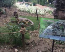 Парк динозавров — фото 2