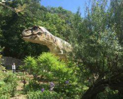 Парк динозавров - фото 12