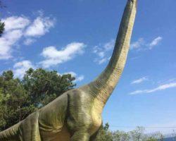 Парк динозавров - фото 10
