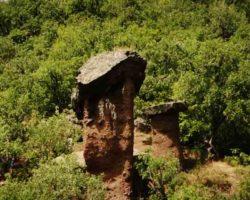 Каменные грибы Сотеры фото