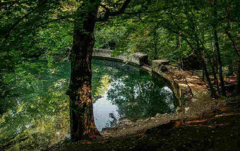 Юсуповский пруд