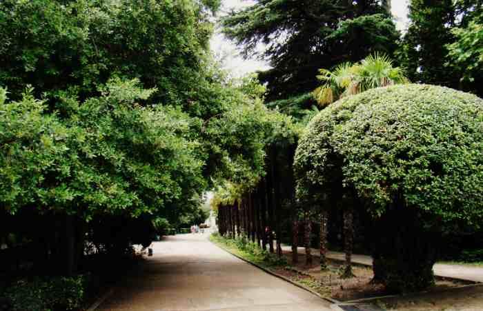 Прогулка по Гурзуфскому парку